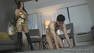 Goddess Harley - Whipping the Cuck-Fuck